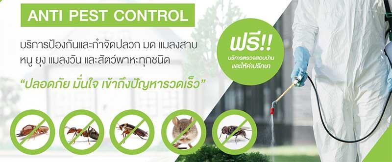 anti-pest-control