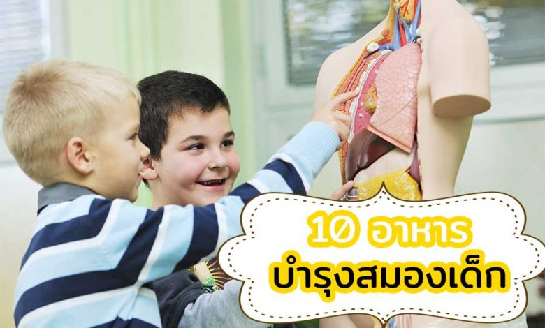 อาหารบำรุงสมองเด็ก