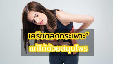 Photo of เครียดลงกระเพาะ รับมือด้วยสมุนไพรและเปลี่ยนพฤติกรรม
